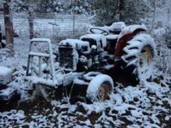 winter snow in texas